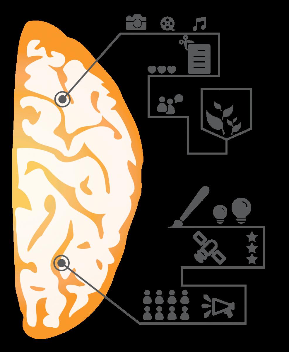 communicatie onderzoek marketing experience rechter hersenhelft