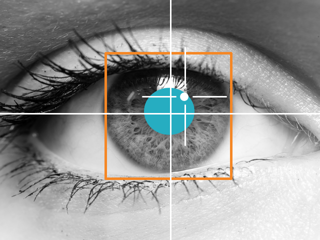 Artikel InstoreOnly: Eye tracking en het brein