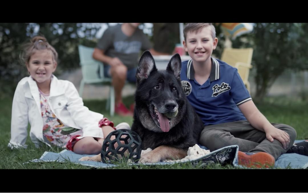 Dierenbescherming winnaar Ster Gouden Loeki 2018?